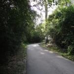 General Trail Shot Mile Marker 3