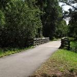 Little Lochloosa Bridge