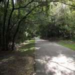 Lake Minneola Scenic Trail - General Trail Shot