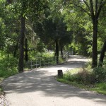 South Lake Trail - Winding Course
