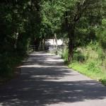 South Lake Trail - General Trail Shot