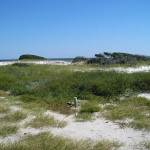 Gulf Islands National Seashore - Looking north over Pensacola Bay