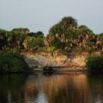 Venetian Waterway Park - Bluff