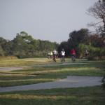 Venetian Waterway Park - Cyclists