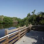Venetian Waterway Park - Viewing Platform