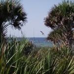 Venetian Waterway Park - Gulf of Mexico