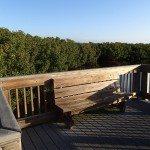 North Bay Trail - Weedon Island Lagoon Overlook