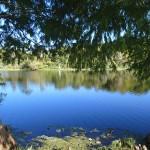 Little Econ Greenway - Overlook