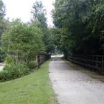 Suwannee River Greenway - General Trail Shot