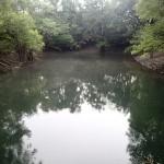 Suwannee River Greenway - Swimming Area