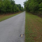 Withlacoochee State Trail - Mile Marker 1 Looking South