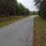 Withlacoochee State Trail - Mile Marker 2 Looking South