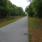 Withlacoochee State Trail - Mile Marker 3 Looking South