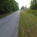 Withlacoochee State Trail - Mile Marker 5 Looking South