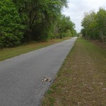 Withlacoochee State Trail - Mile Marker 37 Looking North