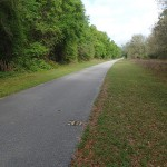 Withlacoochee State Trail - Mile Marker 38 Looking North