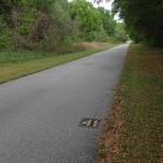 Withlacoochee State Trail - Mile Marker 41 Looking North