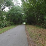 Withlacoochee State Trail - Tunnel of Trees