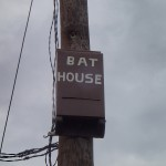 Withlacoochee State Trail - Bat House