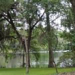 Withlacoochee State Trail - Lake View