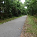Withlacoochee State Trail - Mile Marker 31 Looking North