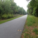 Withlacoochee State Trail - Mile Marker 24 Looking South