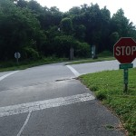 Withlacoochee State Trail - Trail Crossing near Nobleton