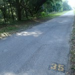 Withlacoochee State Trail - Mile Marker 35 Looking South