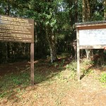 Withlacoochee State Trail - Croom Mountain Bike Trails